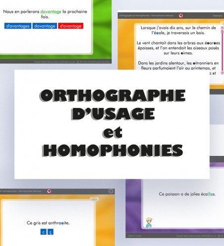 Orthographe et homophonies